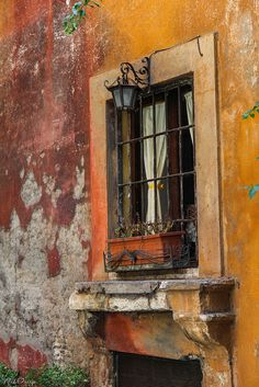 dcpnomadictraveler:  While we boldly claim nature as our subject or canvas, it seem she simply waits patiently humbling us with time, weather and stunning effect. alucardoo:  Window by Mad Orange on Flickr.