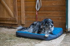 Sweet dreams with Ruffwear's Urban Sprawl Dog Bed! Check it out here: http://bit.ly/1GVNHaG