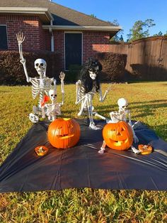 Halloween Yard Displays, Halloween Lawn, Halloween Skeleton Decorations, Halloween Skeletons, Outdoor Halloween, Halloween Projects, Diy Halloween Decorations, Holidays Halloween, Scary Halloween