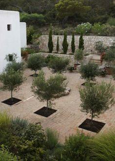paloma sanz / jardín, isla de formentera / repinned on toby designs