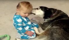 一緒にいると安心なの寒い日は人と犬のふれあい動画でほっこりしてね