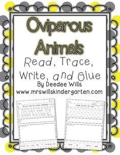 Mrs. Wills Kindergarten: Lesson Plans for Next Week Oviparous Animals...Some Freebies!