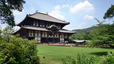 Temple visitors will also encounter some deer from the adjacent Nara Park, begging for shika senbei, special crackers for deer that are sol…