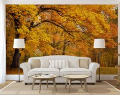 Aspen forest trees mural wallpaper repositionable peel for Aspen tree wall mural