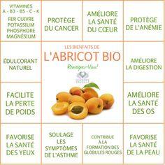 Tous les bienfaits de l'Abricot
