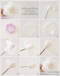 DIY Carnation