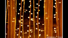 Beautiful Stinged Lights | LOOK BOOK: Beautiful Uses Of Outdoor String Lights [Lighting Ideas ...