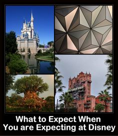 Is it worth it to go on a Disney vacation while pregnant? Can you really enjoy it? Will you be able to ride any rides? Expectant mothers often ask me for advice when planning for Disney. Most of their questions and concerns are about what to expect. So, whether you are planning a family vacation …