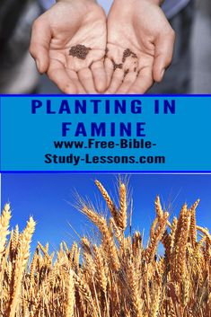 Isaac planted his crops in the face of famine and God honoured his faith. What do you have to plant? #faith #isaac #prosper #hardtimes Bible Study Lessons, Free Bible Study, What Did Jesus Do, 1 Kings 17, Bible Commentary, Need A Job, Need Friends, Natural Instinct, Broken Relationships