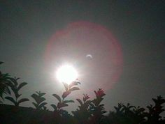 """[May 20, 2012] Los Angeles Times:  """"The 'ring of fire' solar eclipse has become a social media event, with images of the rare event shared on Facebook, Twitter and other Web applications. In Los Angeles, the partial eclipse was captured in backyards, roofs and parks -- as well as from such landmarks as Staples Center before the Clippers game, Dodger Stadium, Hollywood Boulevard and Griffith Park and even on freeways."""""""