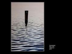 Gustavo Fernandes - Tranquilidade