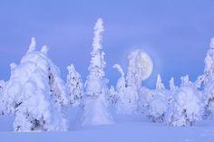 Photo Ismo Pekkarinen.Maisema Iso-Syötteeltä.Landscape in Iso-Syöte. #isosyöte #kuu #moon  #winter #maisema #landscape #finland