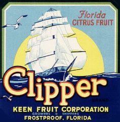 Clipper Citrus Fruits. #crateart