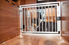 Hundebox im Wohnmobil