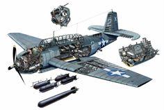 lex-for-lexington:  Cut-away diagram of a TBM Avenger torpedo bomber.