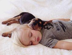 Cachorros durmiendo la siesta. By Jessica Shyba.