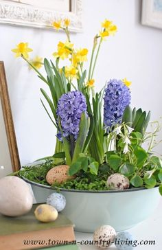 I love spring flowers and decided to create an easy DIY spring bulb arrangement with mini daffodils and fragrant hyacinths from the store.