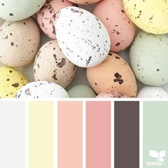 today's inspiration image for { holiday hues } is by @piensaar ... thank you, Nicolette, for another incredible #SeedsColor image share ... Happy Easter!