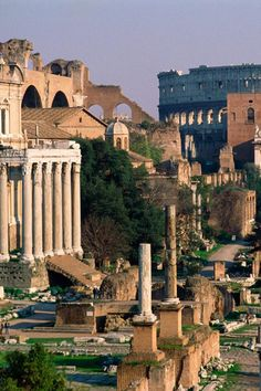 The Forum, Rome, Italy Another one of my favorite places in the world! (: