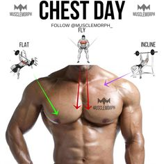 CHEST DAY CHEST EXERCISE CHEST TRAINING GYM BODYBUILDING MUSCLE MUSCLEMORPH https://musclemorphsupps.com/