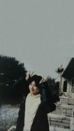 Im Going Crazy, Baby Koala, Boy Idols, Bae, Treasure Boxes, I Wallpaper, Photo And Video, Boy Groups, Artwork