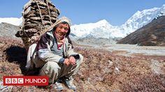 Ellos son los encargados de cargar los bultos más pesados durante las excursiones de los montañistas que aspiran a llegar a la cima de la montaña más alta del mundo. ¿Cómo resisten? El secreto está en su fisiología.
