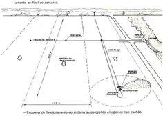 ::. Núcleo de Estudo em Fruticultura no Cerrado .::