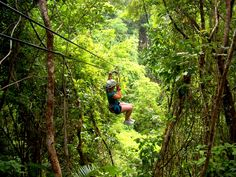 Ziplining in the Belizean Jungle #adventure #xoBelize