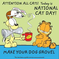 Attention All Cats! Today is #NationalCatDay. Make your dog grovel. This has been a public service announcement.