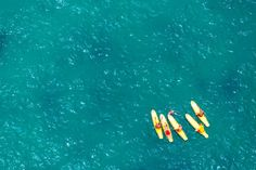 Bondi Surf Lifegaurds by Gray Malin