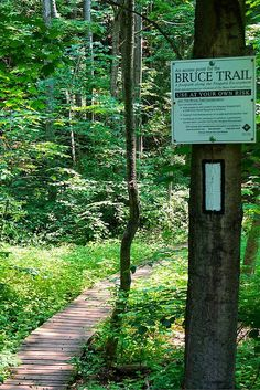 Situated in Ontario, The Bruce Trail is the oldest and longest marked hiking trail in Canada. It is 885 km long, from Queenston Heights in Niagara Falls to Tobermory. Depending on your physical ability, if Bike Trails, Hiking Trails, Around The World In 80 Days, Around The Worlds, Tobermory Ontario, Ontario Travel, Visit Canada, Natural Wonders, Day Trips