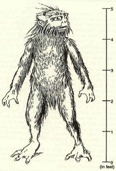 Thetis Lake Monster, similar to the Half Fish, Half Human God of the  Dogon Tribe of Mali Africa.
