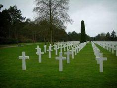 Cimetière américain de Colleville-sur-Mer - Tombes du cimetière militaire américain et arbres