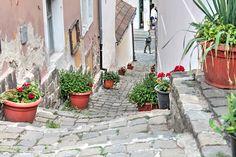 Narrow street by DuncanImagery Hungary, Cities, Sidewalk, Architecture, Plants, Arquitetura, Side Walkway, Walkway, Plant