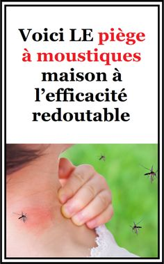 Working With Children, Danger, Voici, How To Plan, Garden, Mosquito Trap, Homemade Insecticide, Trier, Home Made