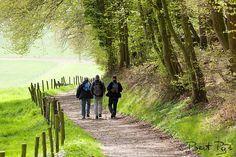 wandelen zuid limburg -