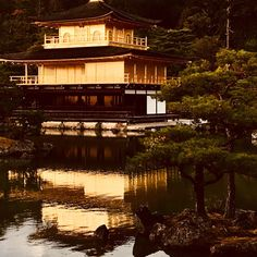 Temple du Pavillon d'or (Kinkaku-ji) (Kyoto) - TripAdvisor Kyoto, Temples, Trip Advisor, Attraction, Cabin, Mansions, House Styles, Deck Gazebo
