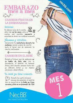 """infografía para pinterest NecBB """"El embarazo mes a mes"""" (Mes 1)"""