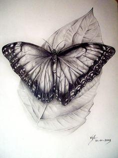 Butterfly by *boy140495 on deviantART