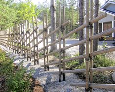 Hagafence moduulinen perinneaita Fence Ideas, Wood, Lawn And Garden, Woodwind Instrument, Timber Wood, Trees