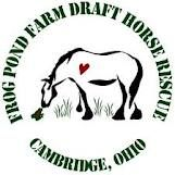 Frog Pond Farm Draft Horse Rescue