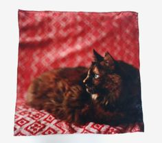 Calling all cat lovers! This handkerchief features a photo of the artist's cat and you'll love the story behind it.