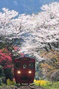 Bungo-nakagawa, Oita,J apan -- photo by ネイル on PHOTOHITO