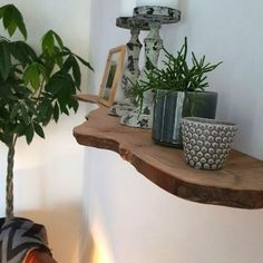 tree trunk wall shelf, Home Accessories, tree trunk wall shelf. Design Living Room, Home Living Room, Living Room Decor, Estilo Tropical, Cool Coffee Tables, Scandinavian Home, Wall Shelves, Room Inspiration, Home Furnishings