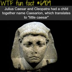 14 August, Queen Cleopatra VII of Egypt declares her son co-ruler as Ptolemy XV Caesarion. He was the eldest son of Cleopatra VII, and possibly the only biological son of Julius Caesar, after whom he was named. Amenhotep Iii, Wtf Fun Facts, Funny Facts, Random Facts, Ancient Egypt, Ancient History, Cleopatra History, Caesar And Cleopatra, Queen Cleopatra