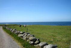 Jæren – Store norske leksikon Stavanger, Finding Peace, Travel Posters, Norway, Mountains, Places, Dreams, Live, Art