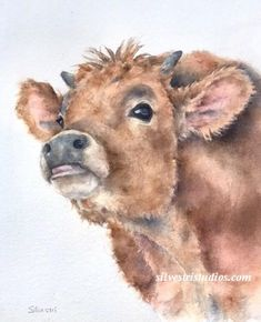 My calf, baby steer watercolor is available as a cute art print and greeting cards.  Perfect for farmhouse and cow decor, in addition to wall art for the nursery.  To view more animal art by Teresa Silvestri, visit www.SilvestriStudios.com