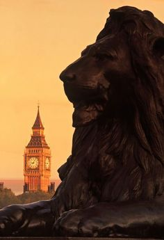 size: Photographic Print: Big Ben from Trafalgar Sq. London, England by Doug Pearson : Artists Westminster, England And Scotland, England Uk, Places To Travel, Places To Go, Lush, London Photography, Sunset Photography, London Calling