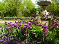 Regent's Park in London is Awash with Spring Flowers in May.