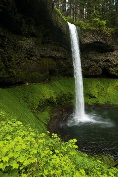 Great Oregon hiking spot - Silver Falls, Silverton